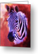 Zebra Greeting Cards - Zebra Portrait Greeting Card by Jai Johnson