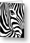 Zebra Greeting Cards - Zebra Greeting Card by Ron Magnes