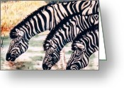 Wildlife Art Ceramics Greeting Cards - Zebras At the Waterhole Greeting Card by Dy Witt