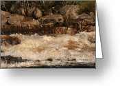 Spume Greeting Cards - Zen in Motion Greeting Card by Dagmar Ceki