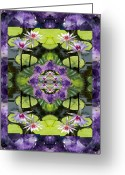 Sacred Geometry Greeting Cards - Zen Lilies Greeting Card by Bell And Todd
