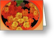 Warm Looking Flower Greeting Cards - Zesty Orange Spice Greeting Card by Debra     Vatalaro