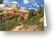 Mountain Landscape Greeting Cards - Zion National Park - A Picturesque Wonderland Greeting Card by Christine Till