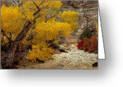 Yellow And Red Greeting Cards - Zion National Park Autumn Greeting Card by Leland Howard