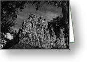 Trees And Rock Cliffs Greeting Cards - Zion National Park ll Greeting Card by Hideaki Sakurai