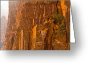 Utah Weather Greeting Cards - Zion Storm Greeting Card by Adam Pender