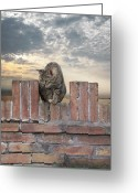 Kitty Greeting Cards - Guarding Orvieto Greeting Card by Lynn Andrews