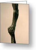 Male Sculpture Greeting Cards - Helping Hand Greeting Card by Gary Kaemmer