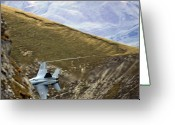 Superhornet Greeting Cards - Hide Greeting Card by Angel  Tarantella