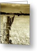 Barbed Wire Greeting Cards - Homeward Bound Greeting Card by Holly Kempe