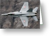 Superhornet Greeting Cards - Hornet Greeting Card by Angel  Tarantella