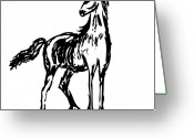 Wild Horse Drawings Greeting Cards - Horse Greeting Card by Karl Addison
