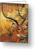 Family Pastels Greeting Cards - Impala At Sunset Greeting Card by Carol McCarty