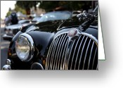 Transportation Greeting Cards - Jaguar Greeting Card by Wingsdomain Art and Photography