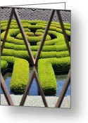 Clayton Greeting Cards - Labyrinth at The Getty Greeting Card by Clayton Bruster