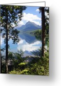 Lake Mcdonald Greeting Cards - Lake McDlonald Through the Trees Glacier National Park Greeting Card by Marty Koch