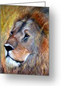 African Animals Painting Greeting Cards - Leo Greeting Card by Frances Marino