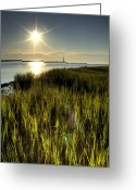 Folly Beach Lighthouse Greeting Cards - Marsh Grass Sunrise Greeting Card by Dustin K Ryan