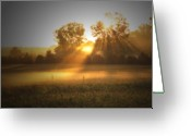 Cornfield Photo Greeting Cards - Morning Sunrise on the Cornfield Greeting Card by Cathy  Beharriell