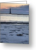 Lighthouse Greeting Cards - Morris Island Lighthouse and Crab Greeting Card by Dustin K Ryan