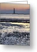Light House Greeting Cards - Morris Island Lighthouse Before Dawn Greeting Card by Dustin K Ryan