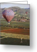 Contry Greeting Cards - Napa Balloon Morning Ride Greeting Card by Takayuki Harada