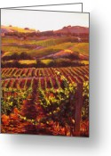 Contry Greeting Cards - Napa Carneros Summer Evening Light Greeting Card by Takayuki Harada