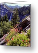 Waterfalls Greeting Cards - Nevada Falls Yosemite National Park Greeting Card by Alan Lenk