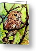 Morgan Greeting Cards - Owl from Butterfingers and Secrets Greeting Card by Morgan Fitzsimons