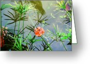 Lilly Pad Greeting Cards - Painting on a Pond Greeting Card by Peter  McIntosh