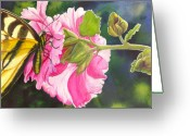 Hollyhock Greeting Cards - Pink Hollyhock Greeting Card by Catherine G McElroy