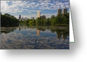 Trump Greeting Cards - Pond and the Chicago Skyline Greeting Card by Sven Brogren