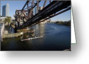 Sculling Greeting Cards - Sculling the Hillsborough Greeting Card by David Lee Thompson