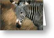 Family Pastels Greeting Cards - Serengeti Zebra Greeting Card by Carol McCarty