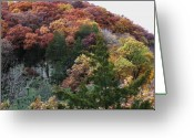 Anna Villarreal Garbis Greeting Cards - Starved Rock Greeting Card by Anna Villarreal Garbis