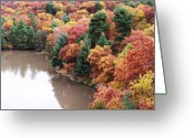 Anna Villarreal Garbis Greeting Cards - Starved Rock Number 444 Greeting Card by Anna Villarreal Garbis