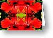 Bruster Greeting Cards - Symmetry Greeting Card by Clayton Bruster