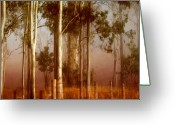 Mist Greeting Cards - Tall Timbers Greeting Card by Holly Kempe