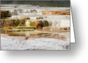 Mammoth. Greeting Cards - Terrace Colors Greeting Card by Chad Davis
