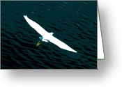 Egret Digital Art Greeting Cards - The Flying Egret Greeting Card by David Lee Thompson