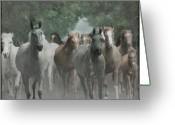 Gallop Greeting Cards - The horsechestnut tree Avenue Greeting Card by Angel  Tarantella