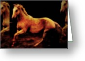 Horses Art Print Greeting Cards - Triple Horse Greeting Card by Nick Sokoloff