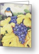 Fall Drawings Greeting Cards - Vineyard Blue Greeting Card by Amy S Turner