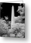 Washington Greeting Cards - Washington Monument During Cherry Blossom Festival in Infrared Greeting Card by Carol M Highsmith