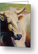 Ranch Greeting Cards - White Bull Portrait Greeting Card by Marion Rose