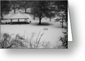 Gray-scale Greeting Cards - Winter at the park Greeting Card by Idaho Scenic Images Linda Lantzy