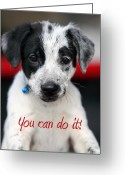 Puppies Greeting Cards - You can do it Greeting Card by Amanda Barcon