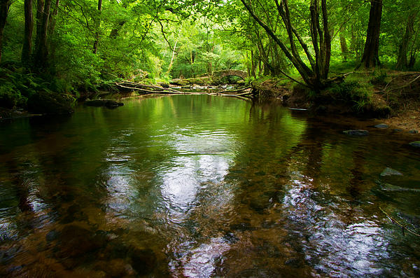 Pete Hemington -  Hisley Bridge in Dartmoor