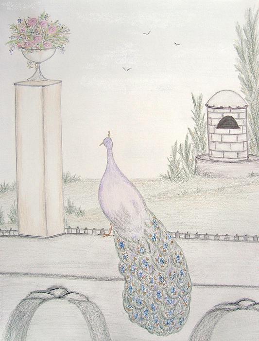 Peacock In An Italian Landscape Print by Christine Corretti