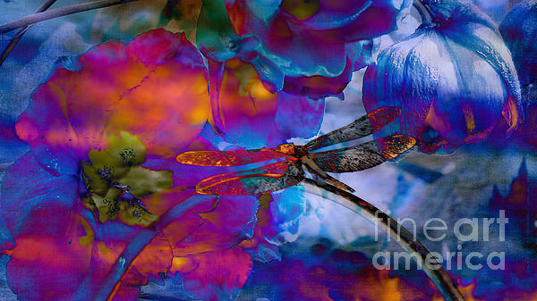Beverly Guilliams -  Stunning  photographic Art Dragonfly